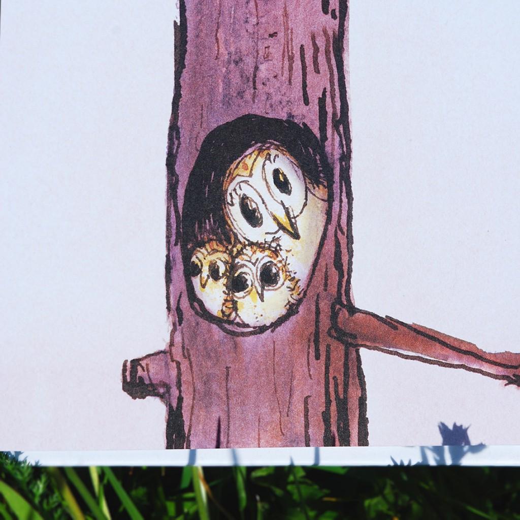 owls square 40cm